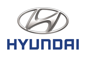 Wiązki dedykowane do HYUNDAI Ioniq Hybrid, 2017, 2018, 2019, 2020, 2021