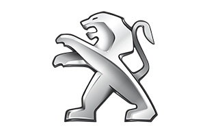 Haki holownicze Nissan QASHQAI+2 rocznik od 2007 do 2013