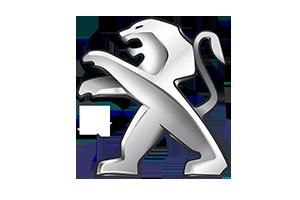 Haki holownicze Nissan X-TRAIL rocznik od 06/2007 do 07/2014