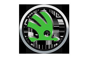 Haki holownicze Peugeot EXPERT rocznik od 2007 do 2016