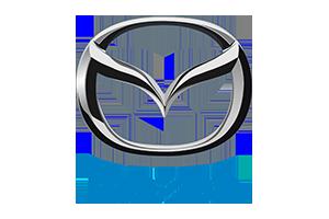 Haki holownicze Nissan NV400